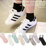 [엔젤삭스]angelsocks - [2+1]Low cotton-socks(8color) 패션양말 삭스