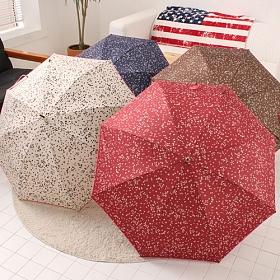 [포레스트레이크] Forest Lake - 작은별 장 우산 4color