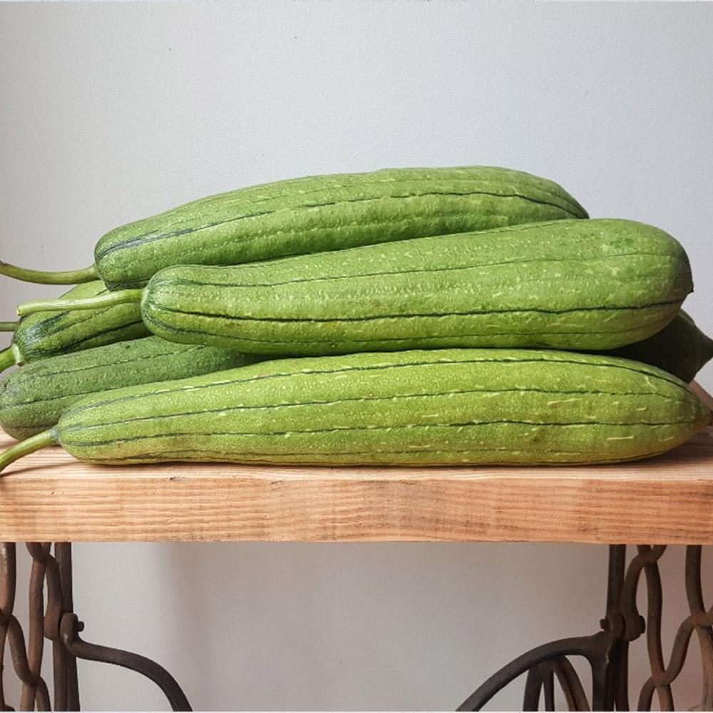 감성 동곡이만든 무농약 생수세미 10kg